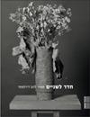 Tamir Lahav-Radlmesser - A Room for Two